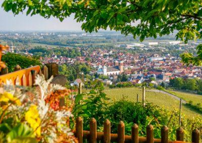 Ausblick Kirchberg in Bensheim